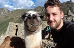 Conhecendo uma llama na Bolívia