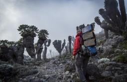 KILI - Maximo e as árvores típicas que só existem no Kili acima de 4000m. Acredite, debaixo das placas solares tem uma Deuter - Foto Gabriel Tarso