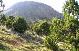 Vulcão Tajumulco
