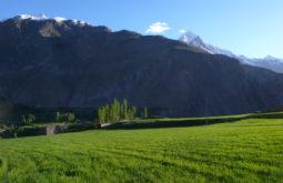 Campo de trigo em Askoli, Paquistão - Foto de Maximo Kausch