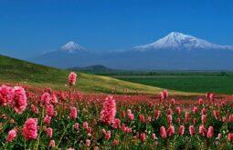 Monte Ararat (2)