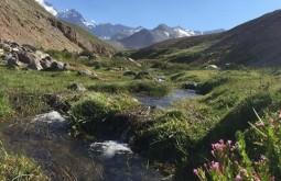 Crude de los Andes 2