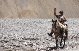 Gaucho á caminho de plaza de mulas - Foto de Julian Beerman