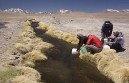 Pegando água para 2 semanas - Foto Caio Vilela