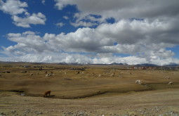 Planalto andino boliviano