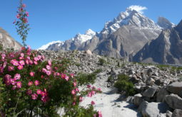 Vista de Jhugla, Paquistão - Foto de Maximo Kausch