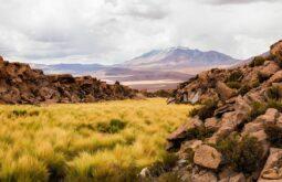 Cerro_Aucanquilcha,_Chile,_2016-02-10,_DD_15